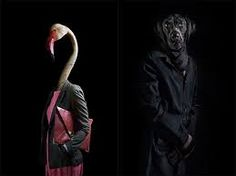 animals dressed like humans - Sök på Google