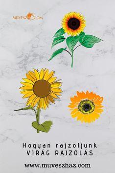 A virág rajzolása lépésről lépésre