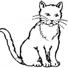 Yavru Kedi Boyama Gercekci Ile Ilgili Gorsel Sonucu Kedi Yavru