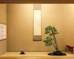 ニュース | NEWS オリジナルデザイン家具 - TIME & STYLE | タイム アンド スタイル Bonsai Art, Japanese Interior, Early Fall, Room Decor, Display, Autumn, Trees, Style, Blog