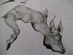 ink deer