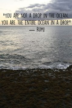 """""""You are not a drop in the ocean. You are the entire ocean in a drop."""" ― Rumi"""
