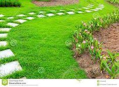 Resultado de imagem para jardim pedras