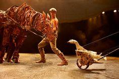 War Horse with Evan