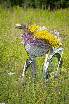 painted bike with floral basket