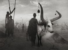 Sebastião Salgado is a Brazilian photographer and former Magnum associate. His work is dedicated to awareness of conditions of both wildlife and humans.