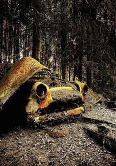 Cementerio de autos  El fotógrafo Dieter Klein ha recorrido el mundo capturando autos abandonados enterrados bajo ramas y follaje de los bosques o campos que los rodean. Para el estos escenarios son una gran fuente de inspiración por la cantidad de historias que se pueden descubrir.