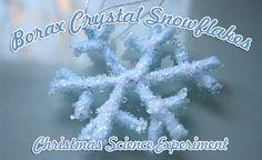 Christmas Science Experiment:  Borax Crystal Snowflakes...