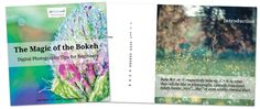 Photography: The Magic of the Bokeh - Learn How to Create Wonderful Bokeh-Photos!