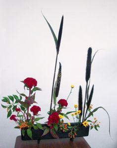 ohara ikebana - hanaisho - one-row form