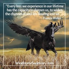 Inspirational Horse Poems Sympathy Poem Image Search