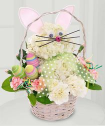 Only $44.95! Enjoy the Great Easter Bunny this Easter, April 20, 2014! Conklyn's Creates a hopping design with hydrangeas and carnations. The floral bunny has whiskers and ears, and is sure to bring a smile to your Easter table. Brought to you by Conklyn's Florist in Alexandria, VA. Design available for local delivery only. Local delivery includes the Washington, DC Metro Area of Northern Virginia and Maryland. Check out our other Easter designs at http://www.conklyns.com/cat-easter/vibrant