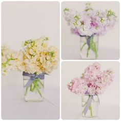 Pretty Pastels - The gorgeous photographs were captured by Mademoiselle Fiona. The beautiful florals were done by SPINA. Pretty Pastel, Mood Boards, Pastels, Florals, Glass Vase, Photographs, Table Decorations, Wedding, Beautiful