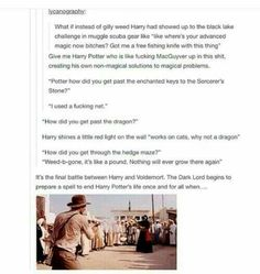 Harry Potter should've used muggle solutions to magical problems. Harry Potter Universal, Harry Potter Fandom, Harry Potter Memes, Slytherin Pride, Hogwarts, Ravenclaw, No Muggles, Yer A Wizard Harry, Fantastic Beasts