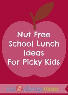Nut Free School Lunch Ideas For the Picky Kids - #nutfree #backtoschool #schoolunches