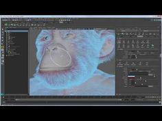 Expert over the shoulder: Grooming chimpanzee fur with XGen - Part 1 - YouTube