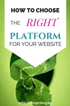 How to Choose the Right Platform for a Website Website Design Layout, Layout Design, Garden Web, Choose The Right, Helping People, Wordpress, Suit, Learning, Platforms
