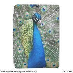 Blue Peacock Photo iPad Air Cover