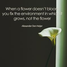 """""""When a flower doesn't bloom you fix the environment in which it grows, not the flower"""" From The Best Unexpected Community"""
