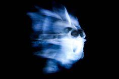 """Die Maske Oder vor der Wahl ist nach der Wahl. Aus der Serie """"Roter Oktober feat. Wien Wahl 2015"""". 2015 Rotierende Skulptur aus Tier Schädelknochen Findling und Projection Mapping aus der Serie """"Pathfinder"""" Skulptur, Objekt, Video, Installation, Fotografie Markus Wintersberger 2015"""