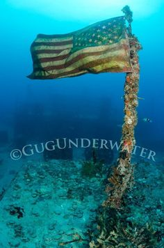 Old Glory Available from Gug Underwater in sizes starting at 20x30 http://www.gugunderwater.com