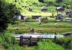 BUENASIEMBRA: Gaia, una Ecoaldea Basada en la Permacultura...