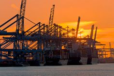 5 op een rij tijdens zonsondergang Maasvlakte te Rotterdam van Anton de Zeeuw