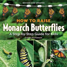 How to Raise Monarch Butterflies: A Step-by-Step Guide fo... https://smile.amazon.com/dp/1770850023/ref=cm_sw_r_pi_dp_b6nKxbH4SJ6NQ