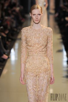 Elie Saab - Couture - Spring-summer 2013 - http://www.flip-zone.net/fashion/couture-1/fashion-houses/elie-saab-3351 - ©PixelFormula