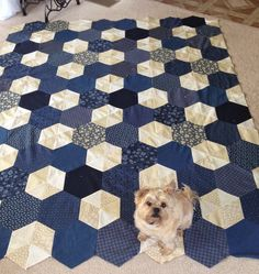 Celtic Heart Knitting and Quilting: Birthday Quilt Delight Quilt by Jaybird Quilts - love her choice of colours