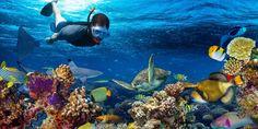 Paket Wisata Liburan Pulau Tidung