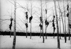 «Грачи прилетели», 1964 год. Фото: Микола Гнисюк