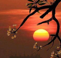 """Boa noite! """"Nada melhor do que um dia após do outro e Deus a frente de tudo, para que Ele possa trazer sonhos a realidade e respostas as orações. No tempo de Deus tudo é perfeito.""""  __Yla Fernandes"""
