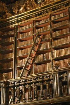 Joanina Library - University of Coimbra - Portugal - Biblioteca Joanina - Wikipedia Magical Library, Beautiful Library, Dream Library, World Library, Library Books, Library Ladder, Bookshelf Plans, Bookshelves, Coimbra Portugal