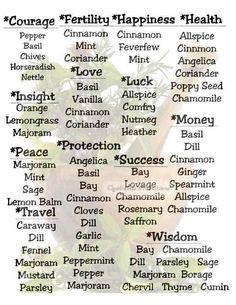Wicca Herbs, Witchcraft Herbs, Witchcraft Spell Books, Green Witchcraft, Witchcraft Meaning, Magic Herbs, Herbal Magic, Herbal Witch, Herb Meanings