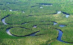 Elivânia Damas - Vendas de Imóveis: Adquira sua casa no Parque Amazônia,Goiânia, Goiás...