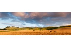 Sunset Harvest At Cherhill #photography #gift #canvas #landscape #nature