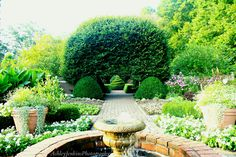 Wegerzen Gardens, Dayton Ohio. Ashley Jenkins Photography