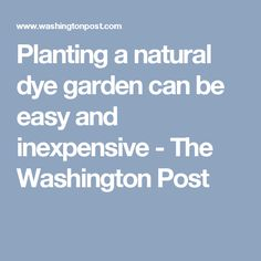 Planting a natural dye garden can be easy and inexpensive - The Washington Post