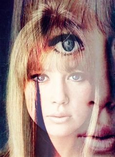 1960s Super Model Patti / Pattie Boyd - later married to both George Harrison and Eric Clapton. Loved her autobiography.