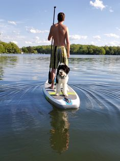 months old, going to be too big for the paddle board soon! Dog Pictures, Cute Pictures, 5 Month Olds, Top Funny, 5 Months, Paddle Boarding, Animal Rescue Shelters, Go Outside, I Love Dogs