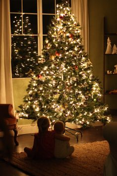 our daily obsessions: :: Photography - christmas tree glow