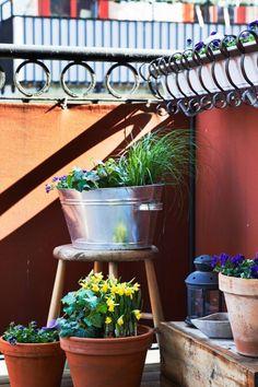 http://www.dobrzemieszkaj.pl/cale_wnetrze/85/skandynawskie_wnetrze_biala_aranzacja_w_stylu_vintage,101115-118392.html