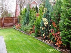 Pomysł na ogród - strona 182 - Forum ogrodnicze - Ogrodowisko
