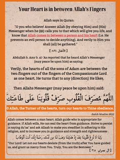 Learn Islam, Quran, Allah, Infographic, Believe, Sayings, Learning, Quotes, Life