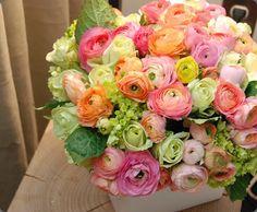 vibrant arrangement