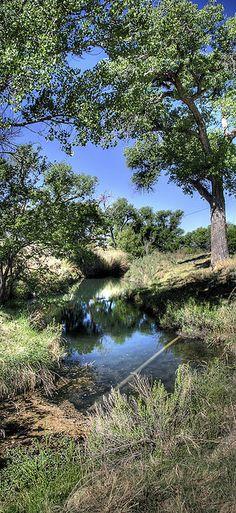 Castle Spring . New Mexico