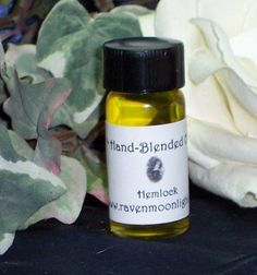 Single Blend Oil: Eastern Hemlock by Raven Moonlight. $9.99. Our oils are hand blended with all natural ingredients for the freshest possible product. All of our oils come in a 1/4 ounce clear glass bottle with a black cap. All bottles are shrink sealed to maintain freshness.   Our base oil is Jojoba with a touch of grapeseed oil and pure 100% essential oils in every blend. All of our oils are 100% cerified organic as well. Jojoba oil is safe to use on your skin, so you can us...