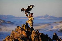 See Mongols don't just do falconry, they take it above and beyond and train golden eagles....come on, now your just showing off