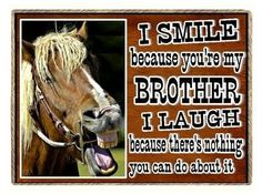Rocky Mountain Creation Funny Horse I Smile Because You're My Brother Refrigerator Gift Magnet Horse Quotes, Horse Sayings, Horse Gifts, I Love You All, Smile Because, I Smile, Rocky Mountains, I Laughed, Westerns